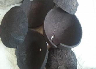 Những lợi ích bất ngờ từ than hoạt tính gáo dừa