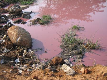 Nguồn nước nhiễm chất hữu cơ và cách xử lý