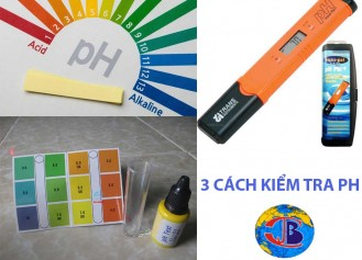 Cách đo độ pH trong nước đơn giản và chính xác nhất