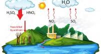 Mưa axit là gì? Nguyên nhân và tác hại của mưa axit